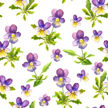 Seamless floral pattern with violet viola flowers