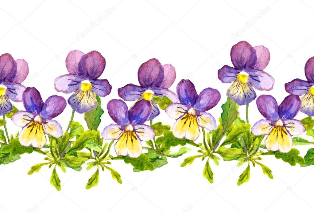 Seamless floral border band with violet viola flowers on white background