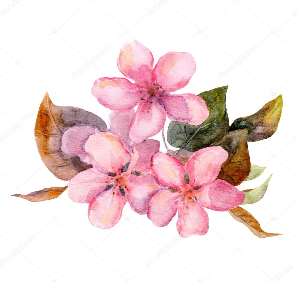 Pink fruit tree flowers - apple, cherry, plum, sakura