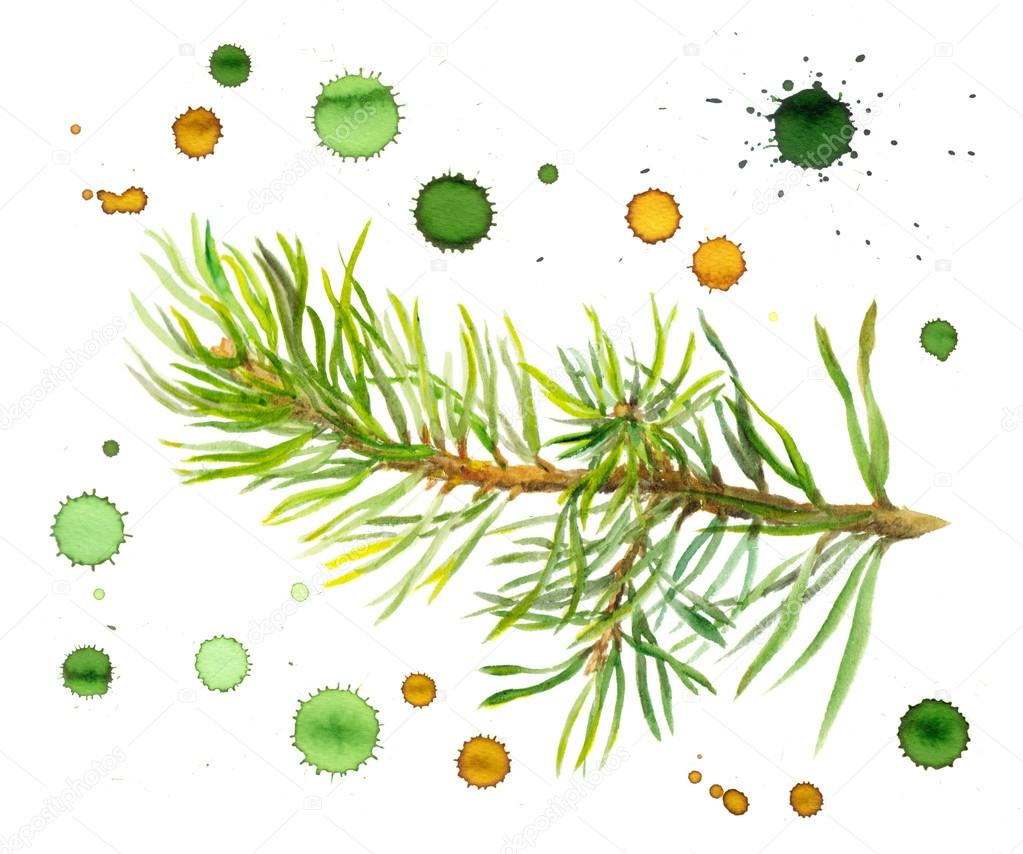 Watercolor fir branch with drawn color drops and stains