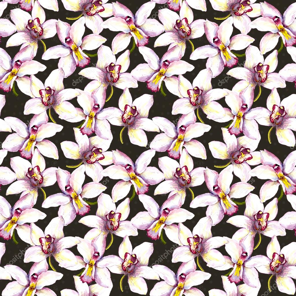 Seamless floral contrast wallpaper with white orchid tropical flower seamless floral contrast wallpaper with white orchid tropical flower on black background stock photo mightylinksfo