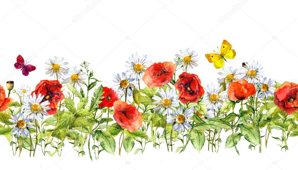 Floral horizontal border. Watercolor meadow flowers, grass, herbs. Seamless frame