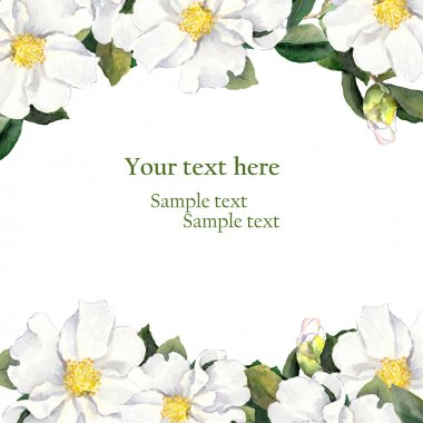 Greeting card with floral border - white flowers. Aquarelle