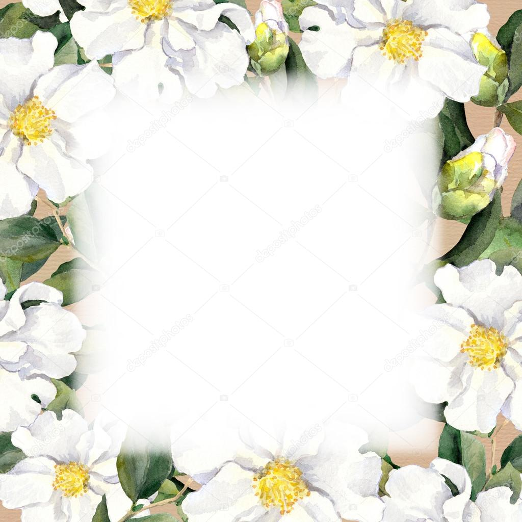 Aquarelle Floral Frame With White Flowers Edging On Paper Texture
