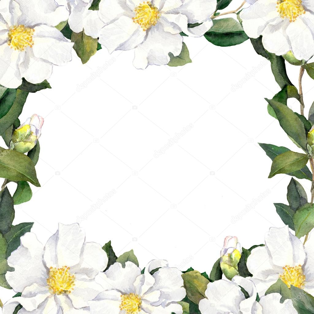 Watercolour Floral Frame With White Flowers Edging Stock Photo