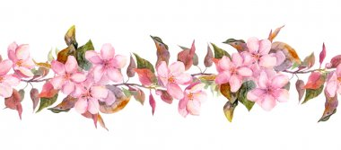 Fruit tree - apple or cherry - flowers. Seamless floral strip border. Botanic watercolor painted banner