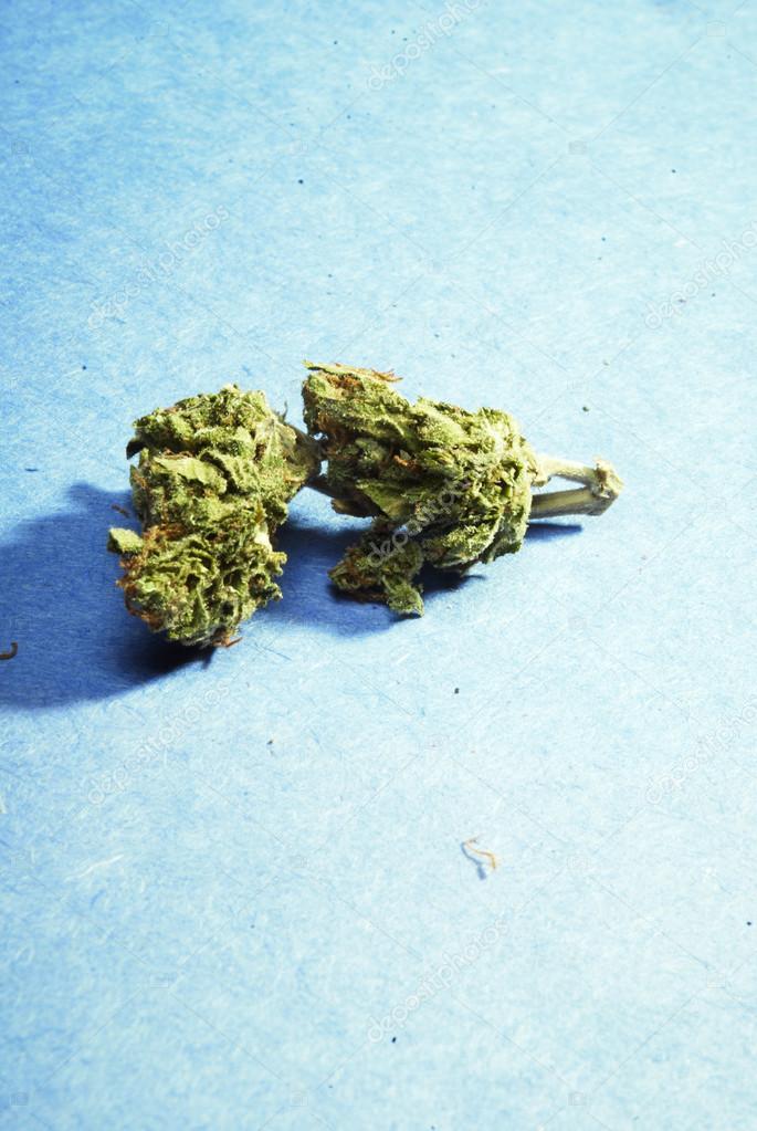И потливость марихуана носить сколько можно граммов конопли