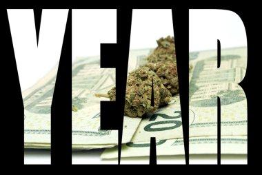 Marijuana, Year 2015