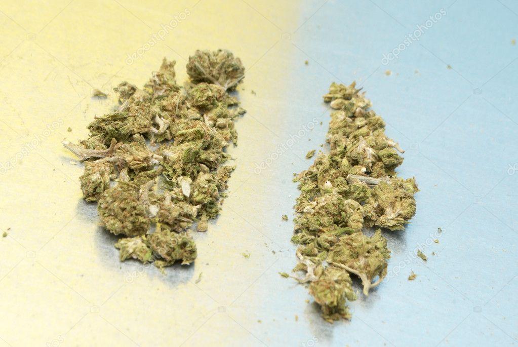 Гепатит ц и марихуана конопля семена из голландии