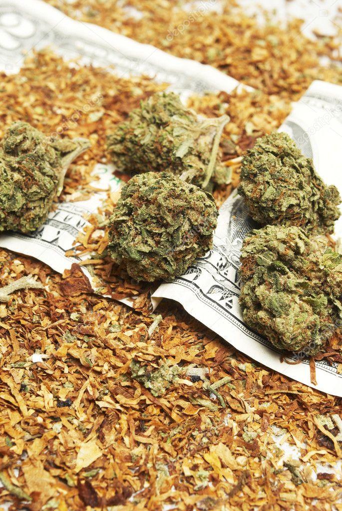 Смесь табака и марихуаны как определить содержание конопли