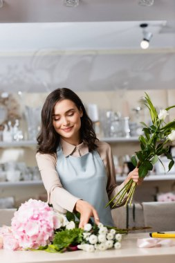 Smiling brunette florist with flowers taking chrysanthemums from desk with blurred racks on background stock vector