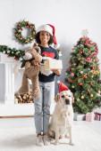 cheerful african american girl holding gift box and teddy bear near labrador dog and christmas tree