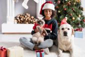 Afrikanische Amerikanerin, Labrador Hund und Katze schauen in die Kamera in der Nähe von Geschenkschachteln und Weihnachtsbaum auf verschwommenem Hintergrund