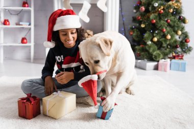 Labrador dog with santa hat on nose touching gift box near happy african american girl on blurred background stock vector