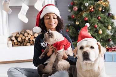 Smiling african american girl holding fluffy cat near labrador dog and christmas tree on blurred background stock vector