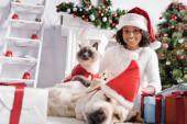 boldog afro-amerikai lány macskával labrador közelében alszik santa kalap elmosódott előtérben