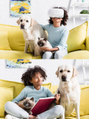 Koláž veselé dívky ve sluchátkách, objímající domácí mazlíčky, držící otevřenou knihu a dívající se na labradora mrkajícího doma