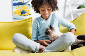 Photo Smiling african american girl with crossed legs, stroking and looking at cat, while sitting on sofa on blurred background