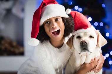 Excited african american girl embracing labrador in santa hat on blurred background stock vector
