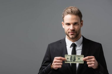 Serious manager holding dollar banknote while looking at camera isolated on grey stock vector