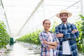 šťastný mezirasoví farmáři se usmívají na kameru, zatímco stojí se zkříženýma rukama ve skleníku
