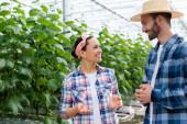 usmívající se africký americký farmář gestikuluje při rozhovoru s kolegou ve skleníku