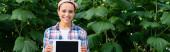 vidám afro-amerikai farmer kockás ingben digitális tablettát tart üres képernyővel, banner