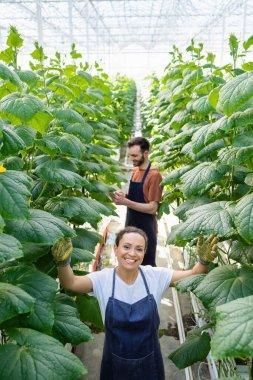 Mutlu Afrikalı Amerikalı kadın, iş arkadaşının yakınındaki kameraya bakıyor. Bulanık arka plan üzerinde çalışıyor.