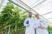 nízkoúhlý pohled na zemědělské techniky v bílých pláštích s úsměvem na fotoaparát ve skleníku