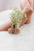 částečný pohled na ženu držící bílé, drobné květiny při vychutnávání mléčné koupele