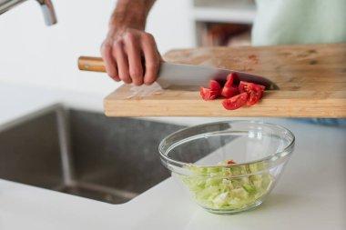 Partial view of man preparing fresh vegetable salad for breakfast stock vector