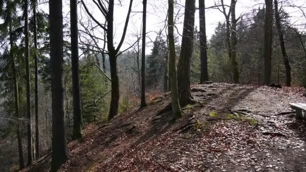 Panoramatický pohled z podzimního lesa nedaleko Karlovy Vary (Karlovy Vary) Česká republika