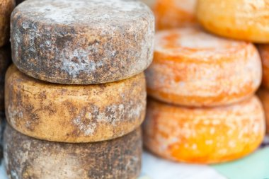 Forms of local cheese
