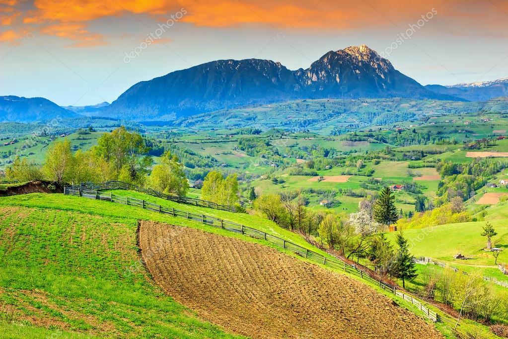 Spring landscape and rural gardens,Holbav,Transylvania,Romania,Europe