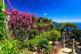 Ozdobné pozastavenou zahradní, Rufolo zahrady, Ravello, pobřeží Amalfi, Itálie, Evropa