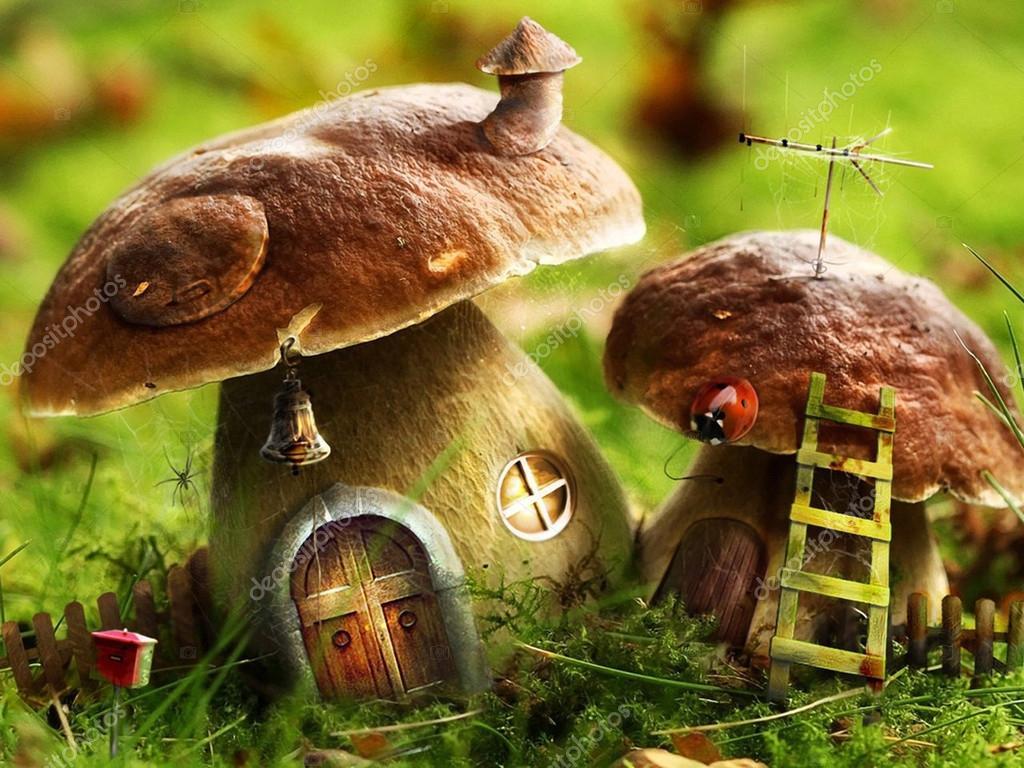 Good Fantasy Wiese Mit Bunten Pilz Häuser U2014 Foto Von Digmas