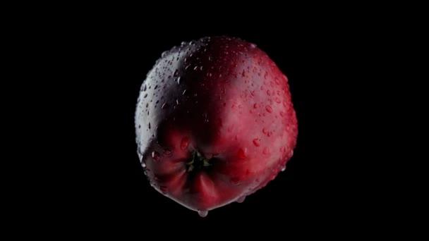 Tasty red apple spins on dark background