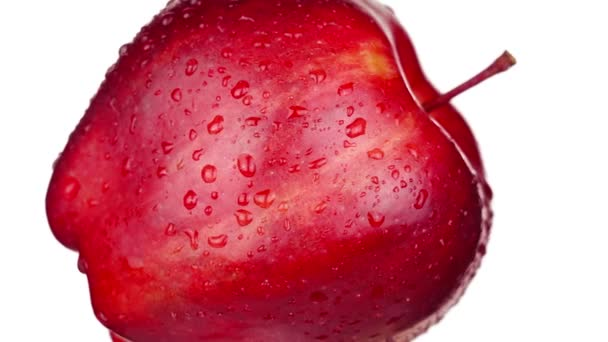 Fresh red apple with small stem and water drops on white