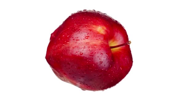 Tasty red apple with small peduncle covered with water drops