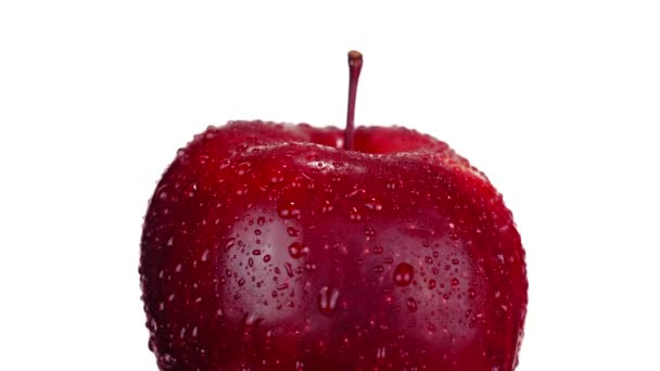 Large sweet red apple with small stem and clear water drops