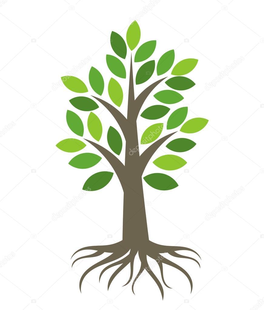 dibujos arboles con raices árbol con raíces vector de stock