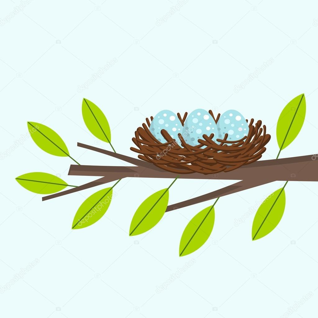bird nest on the tree branch � stock vector