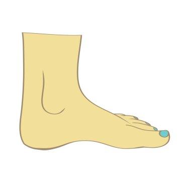 feet in vector
