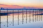Fotografie Tokijský záliv a horu Fudži