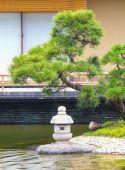 Fotografie Japonská zelená zahrada