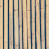Fotografie bamboo wood wall