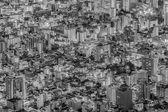 pohled na město Tokio