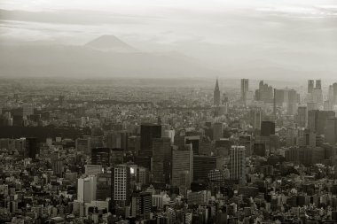 Tokyo skyscrapers and Mountain Fuji
