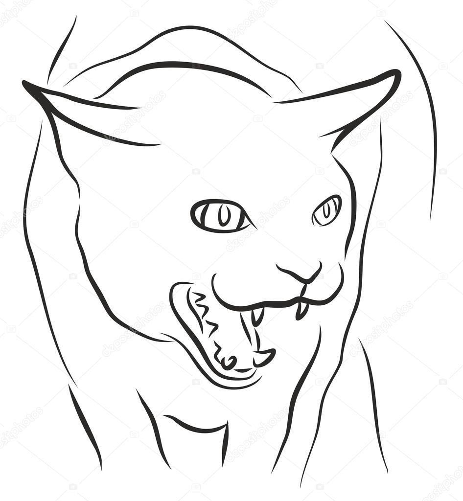 Sketch Of Angry Cat Stock Vector C Designer An 102439102