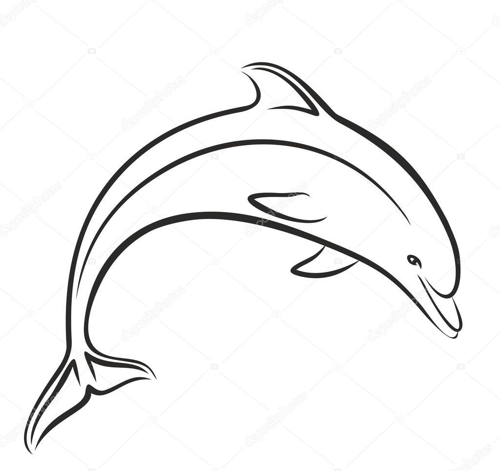 dolfijn schets in stap springen stockvector 169 designer